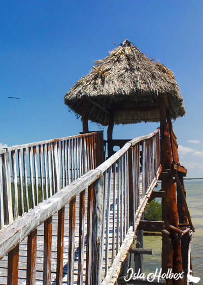 Isla Pajaros, Holbox Attractions
