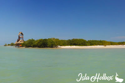 Passion Island, Holbox Attractions